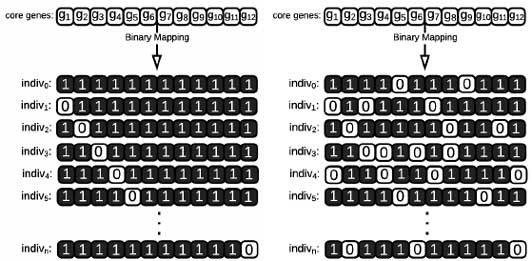 Binary-mapping